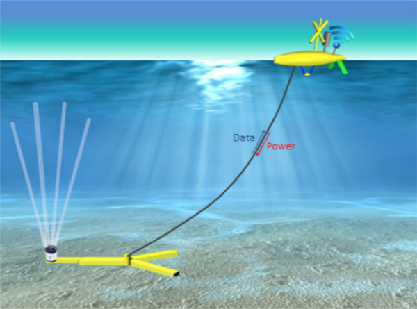 Datafish, bottom mounted sensors